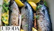 Uroda Życia poleca: makrele pieczone z cynamonem, zielem angielskim i cytrynami
